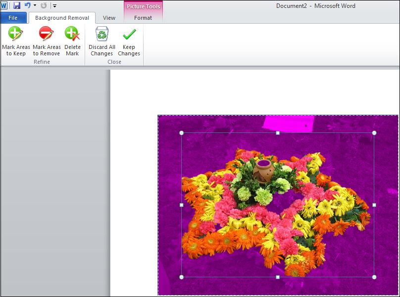 Background removal area.jpg image from Background Removal Tool in Office 2010 at Office-Watch.com