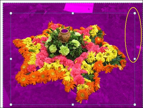 Edit background.jpg image from Background Removal Tool in Office 2010 at Office-Watch.com