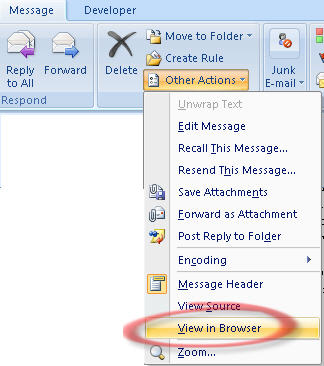 878 Outlook 2007   View in Browser - How to copy a picture from an Outlook email