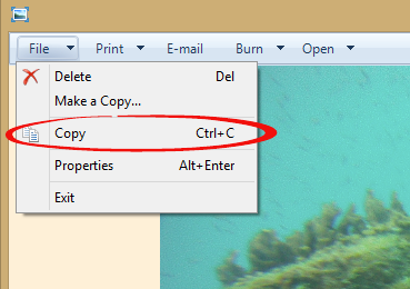 http://img.office-watch.com/ow/Copy image to clipboard.png image from A faster way to copy pictures into Office documents at Office-Watch.com
